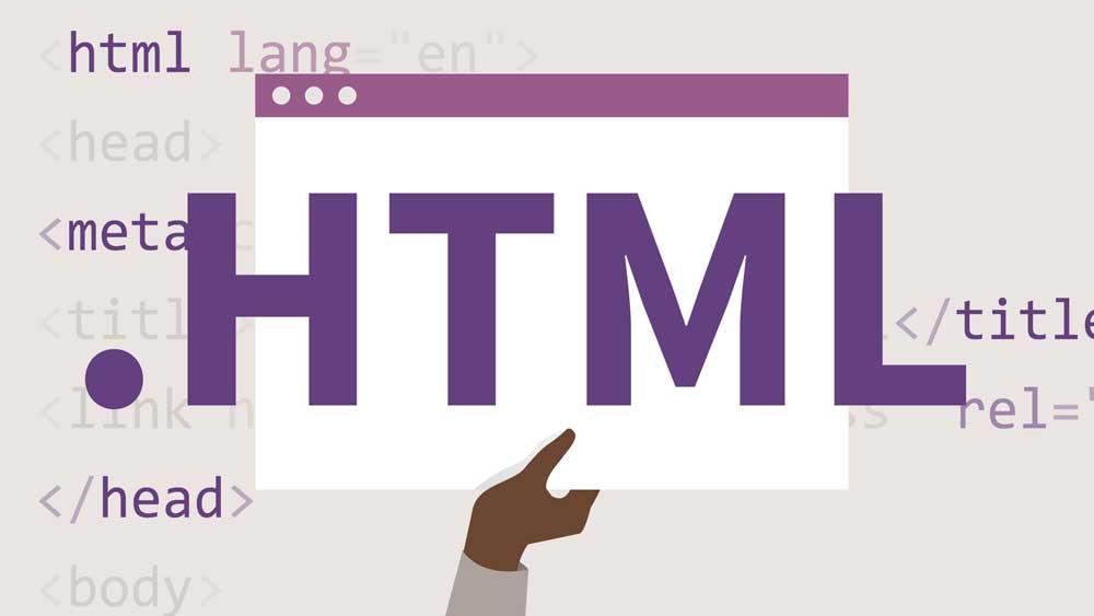 Lập trình web là gì?